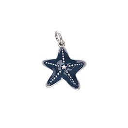 Keepsake Charm - Starfish