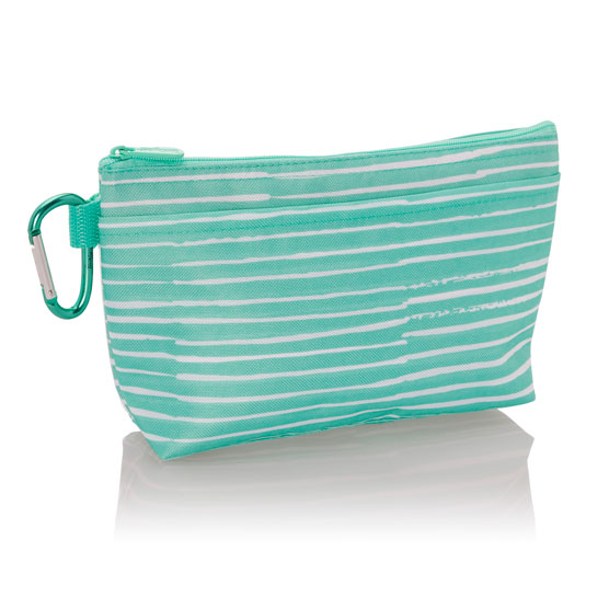 Clear Clip Pouch - Miami Stripe